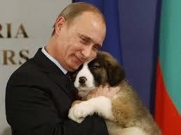 FCA - PutinPuppy