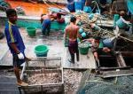 Fishermen on a Thai shrimp boat